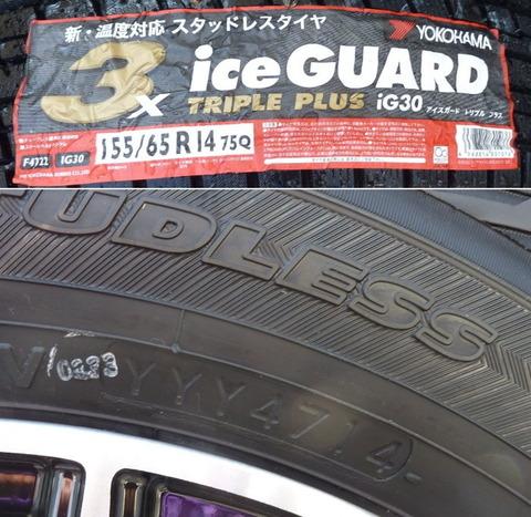iceguard02.jpg
