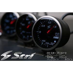 stri_dsd-slm2.jpg